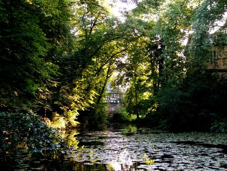 Pond behind Schloss Eller