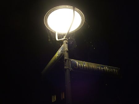 Streetlamp Encased in Spider Webs