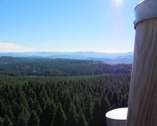 Panorama von Loermecke Turm