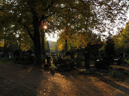 Nordfriedhof View of Graves in Sunset