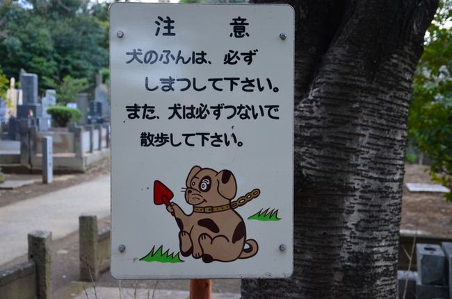 Yanaka cemetery dog with tiny shovel