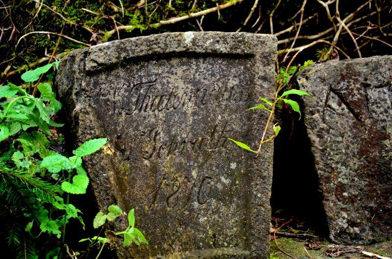 Stone marker in Bracken