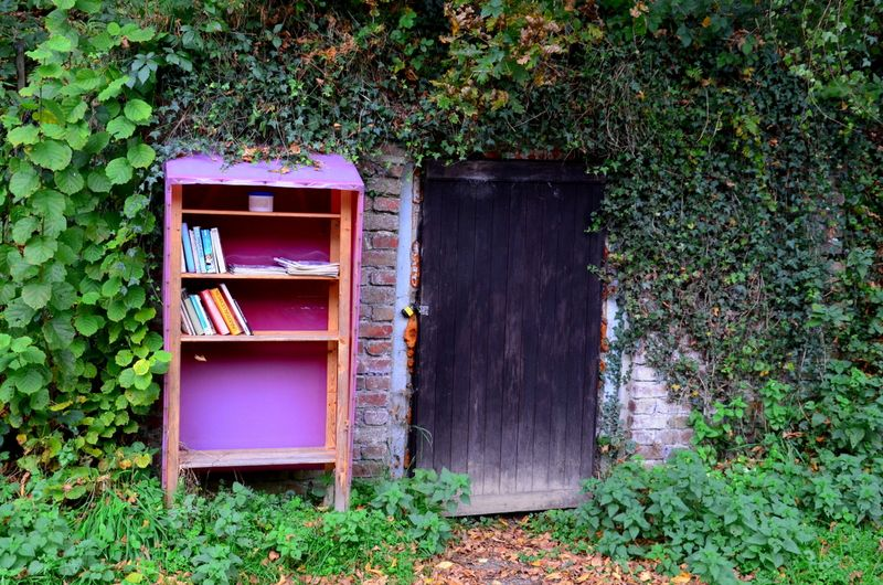 Bookshelf and door near Bracken