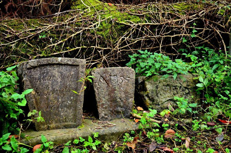 Stone markers in Bracken
