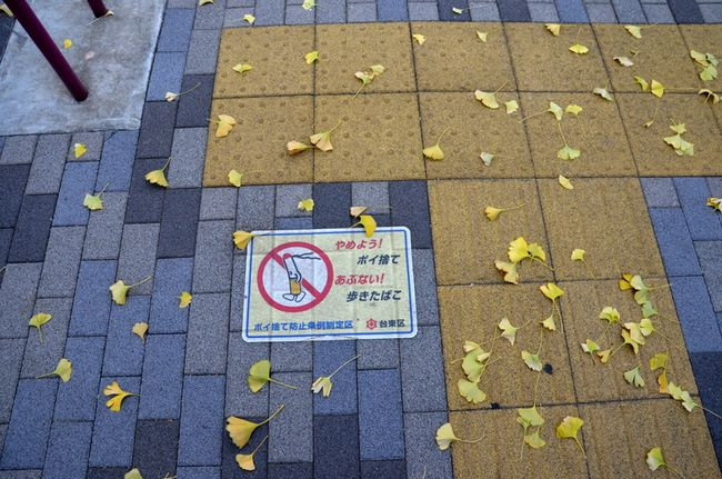 Yanaka no smoking gingko leaves